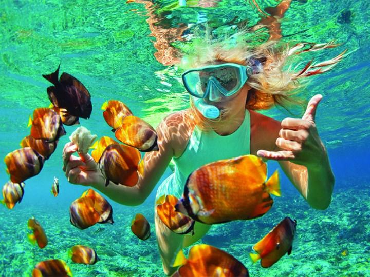 Musandam Oman Snorkeling